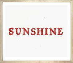 John Derian Company Inc — Sunshine