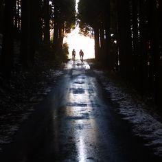#Riding. #BikeSharing. #TakeItEasy.