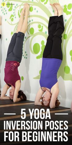 Top 5 Yoga Inversion Poses For Beginners To find relief from stressful life, you can practice inversion yoga. Learn the yoga inversion poses for beginners detailed in this article. Vinyasa Yoga, Ashtanga Yoga, Yoga Inversions, Yoga Sequences, Handstands, Yoga Beginners, Beginner Yoga, Advanced Yoga, Yin Yoga