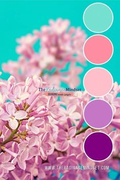 Purple in Marketing: Using Color in Branding Purple Color Schemes, Color Schemes Colour Palettes, Colour Pallette, Color Combos, Color Palette Challenge, Color Balance, Colour Board, Turquoise Color, Color Swatches