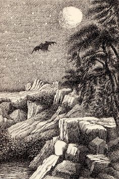 """The Bat-Poet"" by Randall Jarrell, illustrated by Maurice Sendak Maurice Sendak, Hans Christian, Original Fairy Tales, Paint Photography, Sacred Art, Classic Books, Dark Art, Les Oeuvres, Creative Art"