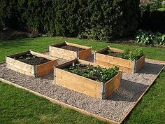 how to make vegetable patch raised Elevated Garden Beds, Raised Garden Beds, Raised Beds, Building A Raised Garden, Vegetable Garden Design, Urban Farming, Garden Projects, Horticulture, Backyard Landscaping