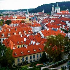 The red roofs of pretty Prague #prague #praguecastle #praha #travel #czech #czechrepublic #redroof #beautiful #studyabroad #nyuinprague