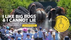 See a 6m tarantula and 6m head-to-tail scorpion when The Big Bug Expo comes to the Jan Marais Nature Reserve in Stellenbosch on Friday, 20 to Sunday, 22 September 2019. The expo is travelling around the country, teaching people about the behaviours and extreme characteristics of the planet's most fascinating creatures – insects.