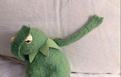 Memes Funny Kermit Life 69 Ideas For 2019 Sapo Kermit, Icons Twitter, Got7, Bambam, Orange Pastel, Dankest Memes, Funny Memes, Bad Memes, Kermit The Frog