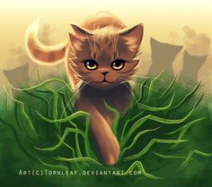 Brackenpaw. Tom. No mate or kits. Playful and nice. Apprentice. Mentor, Longstripe. Has a crush on Cinderpaw. ~me~