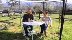 raymonde hazan - YouTube