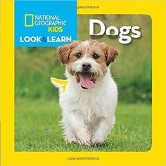 National Geographic Little Kids' Look and Learn series is a multilayered skill-building approach that introduces concepts with context. In Dogs, curious children are introduced to the fun and fascinating world of beloved household canines! Dog Books, Book Club Books, Children's Books, Early Learning, Fun Learning, National Geographic Animals, Dog Facts, Different Dogs, Magazines For Kids