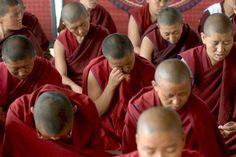 """Mitgefühl und Güte lassen sich durch Meditation trainieren: Das beweist eine Studie, bei der erstmals die Gehirne von 16 tibetischen Mönchen mit einer funktionellen Kernspintomografie (fMRT) untersucht wurden. Über die veränderte Gehirnaktivität berichten US-Forscher im Journal """"Plos One""""."""