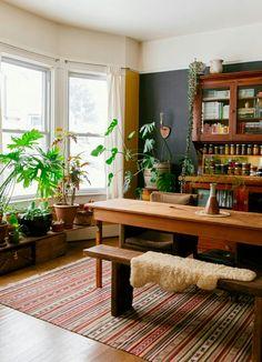 Plants belong EVERYWHERE