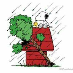 Another hurricane season on the way!!