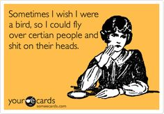 Sometimes I wish I were a bird, so I could fly over certian people and shit on their heads.