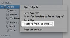 Here's how to recover deleted photos from iPhone through iCloud or an iTunes backup. If you accidentally lost photos on your iPhone/iPad, follow this method: