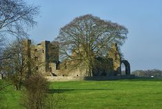 Bective Abbey Photograph by Maria Keady