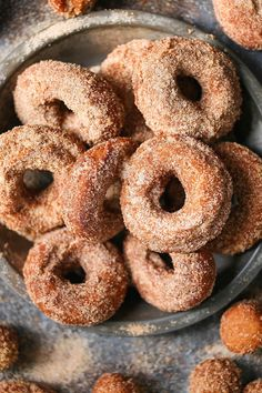 Apple Cider Donuts - There's nothing truly better than biting into a warm fresh donut coated in cinnamon sugar. It melts in your mouth with every bite! Fall Desserts, Just Desserts, Dessert Recipes, Fall Snacks, Recipes Dinner, Healthy Desserts, Dessert Ideas, Delicious Desserts, Yummy Food