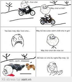 Ê con chó :v