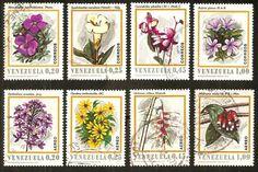 Venezuela estampilla Flores de Venezuela Fecha Junio 29 1970 Impresor: Bundesdruskerei, Berlín. Perforación 14