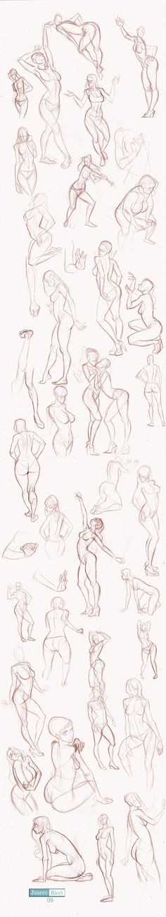 Drawing the Female Body - Female body sketches - Poses and Gestures - Anatomical Study - Drawing Reference Gesture Drawing, Body Drawing, Anatomy Drawing, Drawing Poses, Life Drawing, Figure Drawing, Body Sketches, Drawing Sketches, Art Drawings