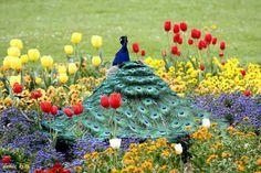 Live life colourful !