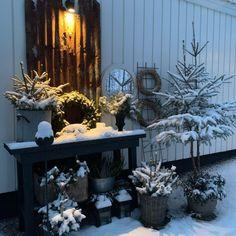Botanic Bleu (@botanicbleu) • Instagram photos and videos Christmas Greenery, Christmas Tree, Table Decorations, Photo And Video, Holiday Decor, Videos, Photos, Instagram, Home Decor
