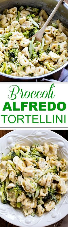 Broccoli Alfredo Tortellini 30 Minute Meal Recipe via Spicy Southern Kitchen - just a few simple ingredients and this meal is on the table is less than 30 minutes! - The BEST 30 Minute Meals Recipes - Easy Quick and Delicious Family Friendly Lunch and Di Pasta Recipes, New Recipes, Vegetarian Recipes, Dinner Recipes, Cooking Recipes, Healthy Recipes, Dinner Ideas, Quick Recipes, Budget Cooking