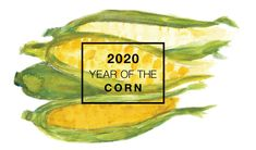 Whether picked fresh from the garden or purchased from the farmers market or local produce aisle, sweet corn continues to be among America's favorite vegetable.