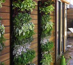 vertical gardening planters - saw a rain gutter solution like this and can't wait to put our herbs and lettuce in them this year.