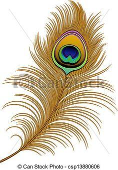 dessins peacock | Vetor - pavão, pena - estoque de ilustração, ilustrações royalty ...