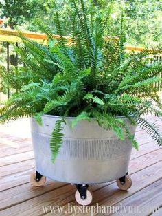 Rolling Galvanized Tub by By Stephanie Lynn   Featured in Clever Container Garden idea slideshow by Gooseberry Patch