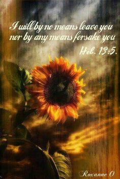 ~Hebrews 13:5~