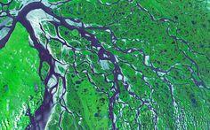 The Lena Delta in Russia