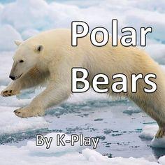 Differences Between the Arctic & Antarctica