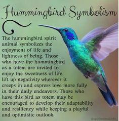 Hummingbird Symbolism Hummingbird Meaning, Spirit Animal or Totem Hummingbird Meaning, Hummingbird Quotes, Hummingbird Symbolism, Watercolor Hummingbird, Hummingbird Nectar, Hummingbird Garden, Hummingbird Flower Tattoos, Hummingbird Sketch, Dragonfly Meaning