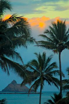 aloha...such unbelievable colors