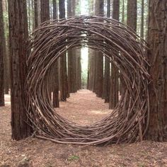 Love this natural wood wreath in woodland, perfect centrepiece for a wedding? Looks like a portal to Fun, Factual, Weird, and Breathtaking: Nature's Art From Wild & Woven # Path Design, Garden Design, Design Art, Portal, Art Et Nature, Twig Art, Ephemeral Art, Wood Wreath, Redwood Forest