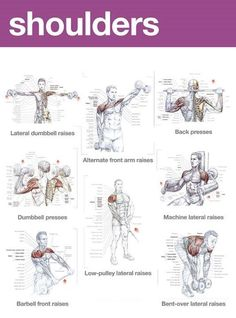 Muscle Building Tips. Gain More Mass With These Weight Training Tips! It can be fun to lift weights if you do it safely and correctly. You can enjoy yourself and see the progress of an effective workout routine. Bodybuilding Training, Fitness Bodybuilding, Bodybuilding Supplements, Bodybuilding Motivation, Chest Workout Women, Chest Workouts, Gym Workouts, Workout Abs, Shoulder Workouts For Men