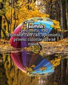 Optimism, Good Morning, Autumn, Quotes, Buen Dia, Quotations, Bonjour, Fall Season, Fall