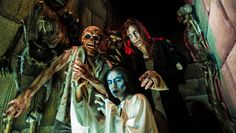 Horror Nights 2015 – Europa-Park stellt Horrorhäuser, Scarezones und Programm vor   http://www.parkerlebnis.de/horror-nights-2015-europa-park-horrorhaeuser_15863.html