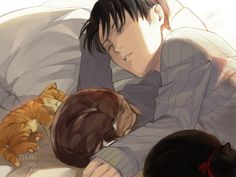 Levi <<< those might be stray cats and Levi has taken them to his house to stay for few days 'cause he knows how horrible it is to live in streets all the time
