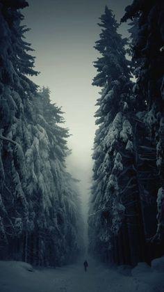 iPhone 6 Snowy Wooden Wallpaper