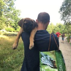 No need to walk when you can get carried through life