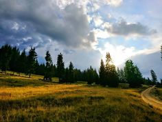#vatradornei #romania #landscape #clouds #bluesky #sunset #treescape #road #hill #mountains #xperia #sony #xperiax #xperiapicsitalia #mountainroad #forrest #iggers #igersitalia