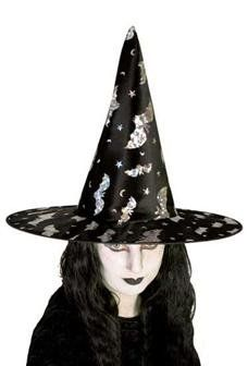 Witch Fancy Dress, Goth, Lady, Silver, Gothic, Goth Subculture, Money