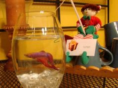 """Walton the Elf was caught fishing in """"Cookie's"""" fish bowl."""