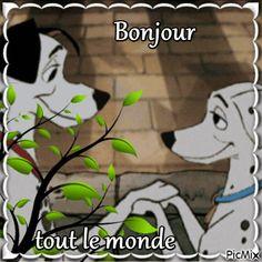 Grinch, Bonjour, Dog, Animaux