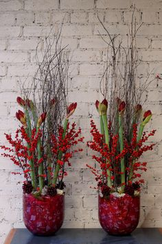 Here are 2 Christmas arrangements sent out to a corporate customer this morning, using red amaryllis, ilex berries, birch branches, moss and red cones. These will look even better when the amaryllis start to open! Christmas Flower Arrangements, Christmas Flowers, Winter Flowers, Christmas Centerpieces, Xmas Decorations, Floral Arrangements, Christmas Berries, Noel Christmas, Chinese New Year Decorations