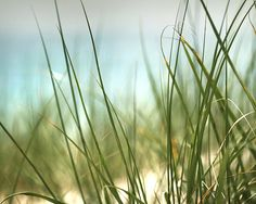 Beach photo Beach Landscape picture Nature by SeeLifeShine on Etsy, $24.00