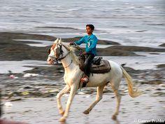 Enjoy a horse ride #Mumbai