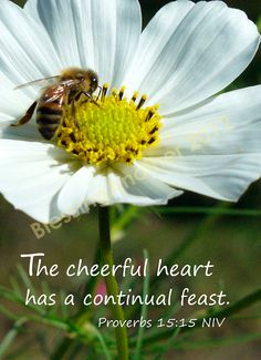 Proverbs 15:15 ~A cheerful heart has a continual feast ~