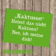 ★ KAKTUSSE! ★ Postkarte ★